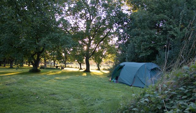 camping-2016